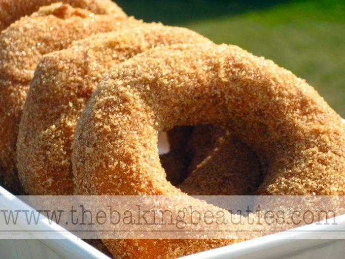 Gluten Free Doughnuts, coated in a wonderful cinnamon-sugar mixture.