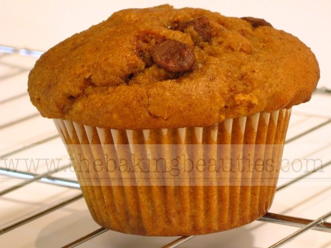 Gluten-Free Pumpkin Chocolate Chip Muffins - Faithfully Gluten Free