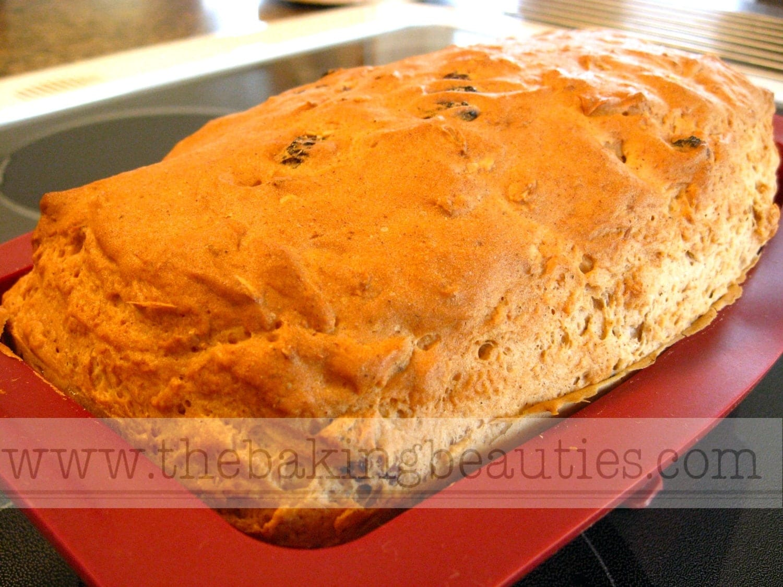 Gluten Free Oatmeal Cinnamon Raisin Bread - The Baking Beauties