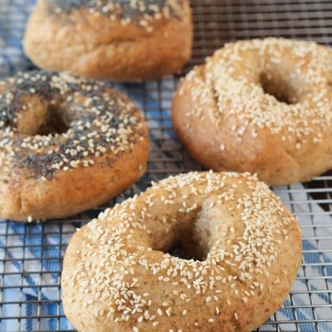 Stop overpaying for Gluten Free Bagels. Making your own at home is easier than you think, and these are bagels are free from gluten, eggs, and dairy.
