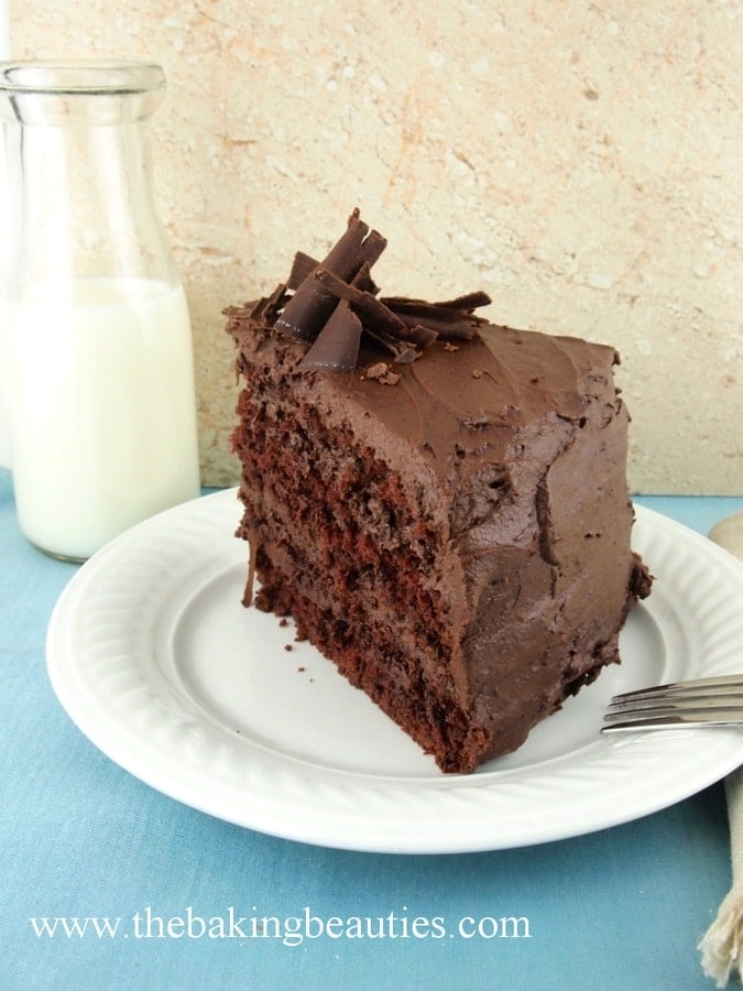 Gluten-free Devil's Food Cake with Mocha Buttercream