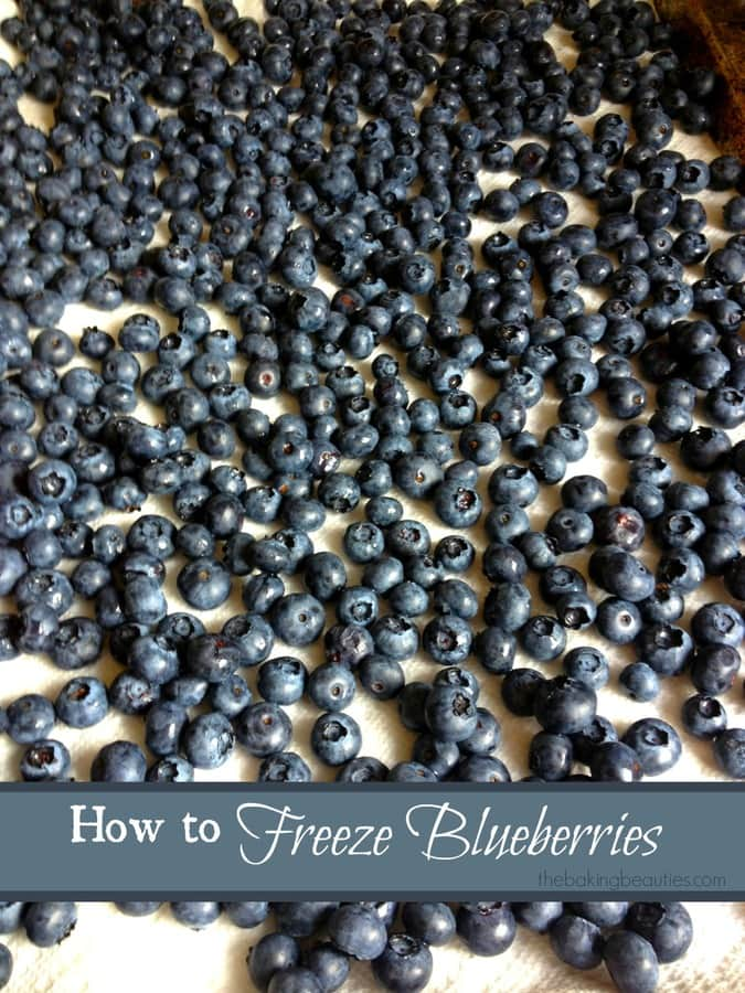 How to Freeze Blueberries | the Baking Beauties