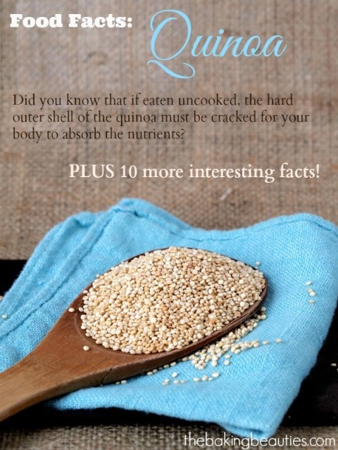Food Facts About Quinoa from The Baking Beauties
