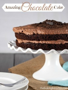 Amazing Gluten Free Chocolate Cake from The Baking Beauties
