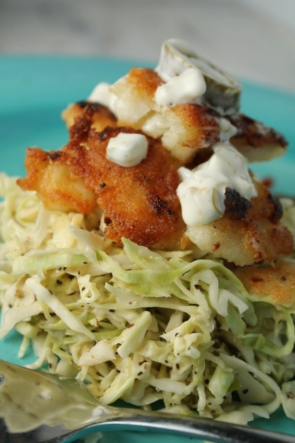 Paleo Fish Taco with a Spicy Slaw by Tessa the Domestic Diva