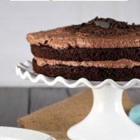 Amazing Gluten Free Chocolate Cake