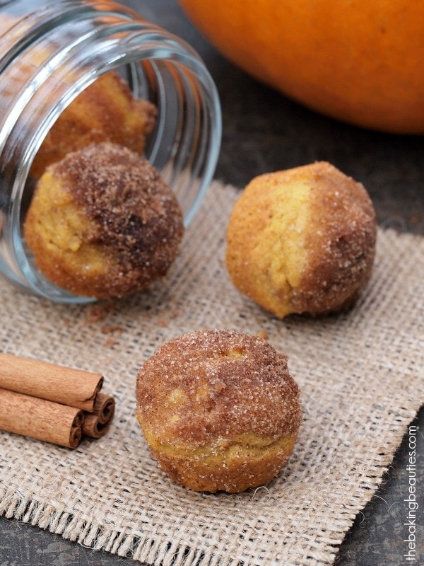 Gluten Free Mini Pumpkin Donut Muffins