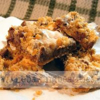 Gluten-free Chocolate Oatmeal Chews